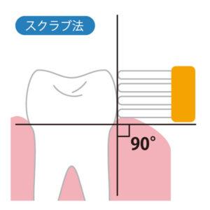 歯ブラシの当て方①