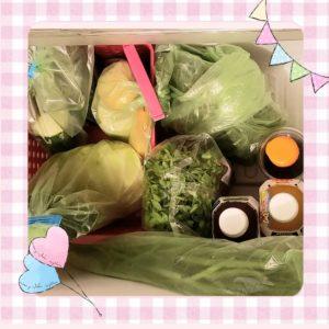 野菜保存袋使用例