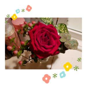ブルミーライフのバラ