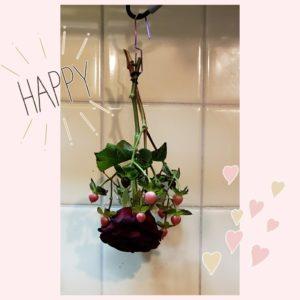 ブルーミーライフのお花をドライに